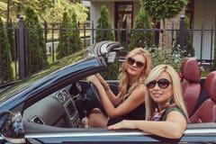 Zwei blonde Freundinnen, die moderne Kleidung in der Sonnenbrille sitzt in einem Cabrioletauto auf Sommerreiseferien tragen Lizenzfreies Stockbild