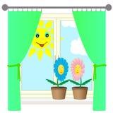 Zwei Blumen auf dem Fensterbrett. Stockfoto