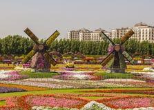 Zwei Blumenmühlen auf dem Feld von Blumen Lizenzfreies Stockbild