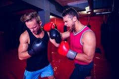 Zwei boxende Männer, die zusammen trainieren Lizenzfreie Stockbilder