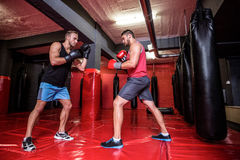 Zwei boxende Männer, die zusammen trainieren Lizenzfreies Stockbild