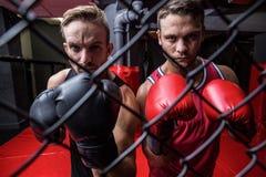 Zwei boxende Männer hinter der Filetarbeit Lizenzfreie Stockfotografie