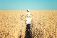 Zwei Brüder laufen gelassen um das Weizenfeld lizenzfreie stockbilder