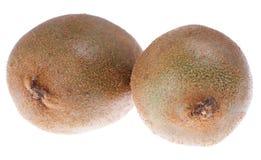 Zwei braune Kiwifrüchte Stockbild