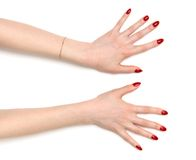 Zwei breite geöffnete Frauenhände Lizenzfreie Stockfotos