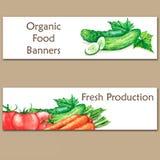Zwei bunte Aquarellfahnen mit neuem biologischem Lebensmittel Stockfotos