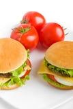 Zwei Cheeseburger auf einer Platte lizenzfreie stockbilder