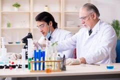 Zwei Chemiker, die im Labor arbeiten lizenzfreies stockbild