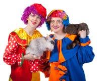 Zwei Clowne mit Kaninchen und Waschbären. Lizenzfreies Stockfoto