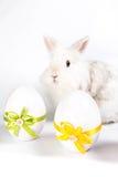 Zwei dekorative Eier mit Häschen stockfotos