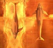 Zwei Delphine lizenzfreie abbildung