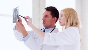 Zwei Doktoren mit Röntgenstrahldrucken stock video footage