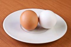 Zwei Eier Stockfotos