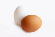 Zwei Eier Lizenzfreie Stockbilder
