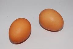 Zwei Eier Stockbilder