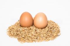 Zwei Eier mit Hülsen Lizenzfreie Stockfotos