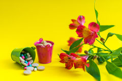 Zwei Eimer voll Pillen mit Blume Lizenzfreies Stockbild
