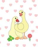 Zwei Enten in der Liebe stock abbildung