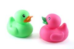 Zwei Enten, die sich gegenüberstellen Lizenzfreies Stockbild