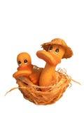 Zwei Entlein im Nest Lizenzfreies Stockbild