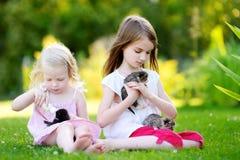 Zwei entzückende kleine Mädchen, die kleine Kätzchen mit Kätzchenmilch von der Flasche einziehen Stockfotografie