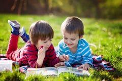 Zwei entzückende nette kaukasische Jungen, liegend im Park in einer feinen SU Lizenzfreie Stockbilder