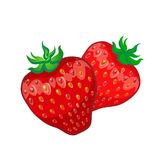 Zwei Erdbeeren lokalisiert auf weißem Hintergrund, Vektor illustrati Lizenzfreies Stockbild