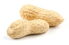 Zwei Erdnüsse Lizenzfreie Stockfotografie