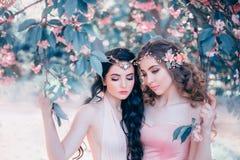 Zwei erstaunliche Elfen mit einer leichten Frühlingsmake-upnahaufnahme Blond und Brunette mit lang, gesundes, gewelltes Haar hand lizenzfreies stockfoto