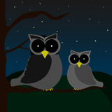 Zwei Eulen, die auf einem Baum während der Nacht mit dem Himmel voll von den Sternen und von den Hügeln auf Hintergrund sitzen Stockfoto