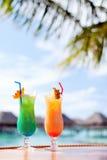 Zwei exotische Cocktails lizenzfreies stockfoto
