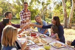 Zwei Familien, die einen Toast am Picknick an einem Tisch in einem Park machen lizenzfreie stockbilder