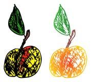 Zwei farbiger Apfel Stockfotografie