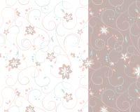 Zwei-farbiger Hintergrund von Blumen Stockbilder