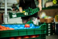 Zwei fast leere Plastikkisten für Tomaten stockfoto