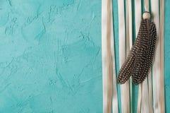 Zwei Federn und beige Satinband Lizenzfreie Stockbilder