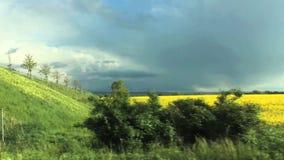 Zwei Felder - gelbes Vergewaltigungsblühen und grüne farbige Anlagen Die gelben Feldänderungen, zum des Feldes nach Grenzbrücke z stock footage