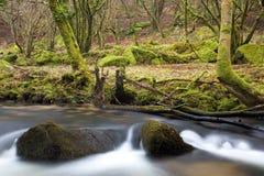Zwei Felsen im Fluss Fowey lizenzfreie stockfotografie