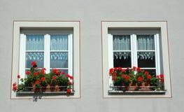 Zwei Fenster mit roten Blumen Stockfoto
