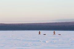 Zwei Fischer bei Sonnenuntergang gehen auf den Schnee im Winter Winter fishi Lizenzfreie Stockfotos