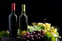Zwei Flaschen Wein stockfoto