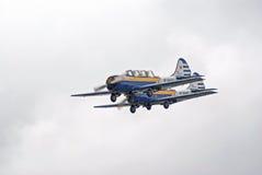 Zwei Flugzeuge Yak-52 fliegen in Anordnung Lizenzfreie Stockfotos