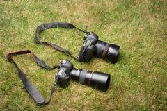 Zwei Fotokameras, Spiegelreflexkameras Stockfotografie