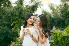 Zwei Frauen, die auf Dachspitzen-Garten-trinkendem Kaffee sich entspannen stockbilder