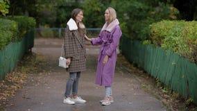 Zwei Frauen, die im Park sprechen stock footage