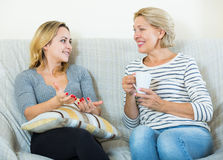 Zwei Frauen, die Tee trinken und am inländischen Innenraum sprechen Lizenzfreie Stockbilder