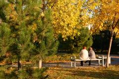 Zwei Frauen sitzen im Herbstpark Stockfotografie