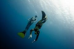 Zwei freedivers haben Spaß in der Tiefe stockfotos