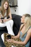 Zwei Freunde, die auf Sofa sich entspannen Stockfotografie