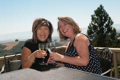 Zwei Freunde, die draußen Wein teilen Stockbild